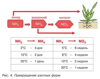 Статья об эффективности различных форм азота в удобрениях